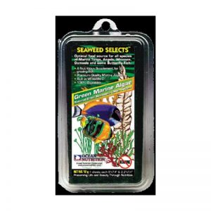 Green Marine Algae (Ocean Nutrition) 12 gr