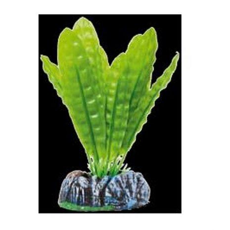 Planta artificial Seda Aponogeton boiviano 13,5 cm