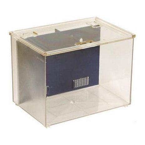 Fish Box mediano