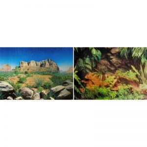 Fondo decorativo Forest/Canyon Blue 60 cm (1 metro