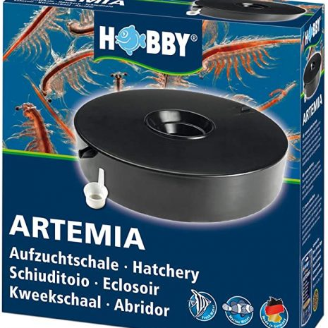 hobby criadero artemia
