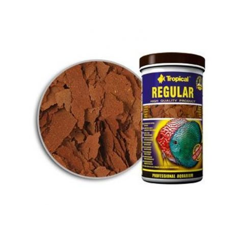 DISCUS REGULAR (TROPICAL) 300 ml (55 gramos).