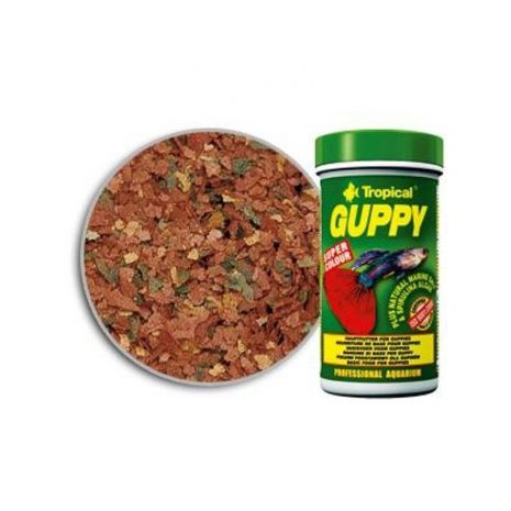 GUPPY (TROPICAL) 100 ml (20 gramos).
