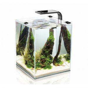 ACUARIO COMPLETO SHRIMP NEGRO 10 litros (Aquael)