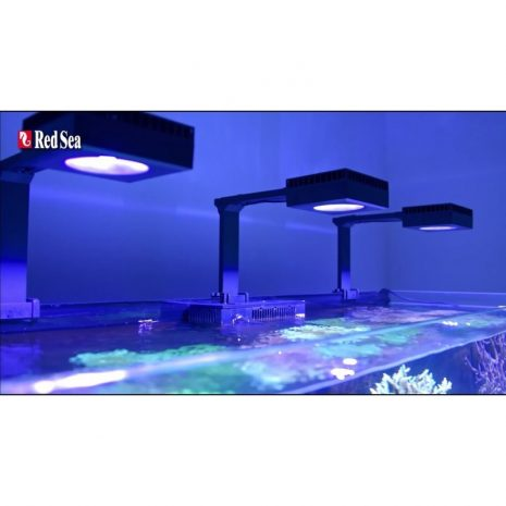 Pack Reef LED 50 (Red Sea)