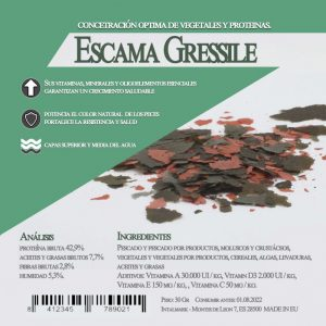 Escasmas gressilile