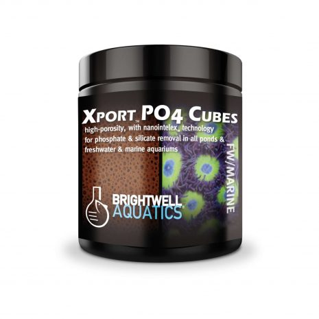 8944-Xport-PO4-Brightwell-Aquatics.jpg