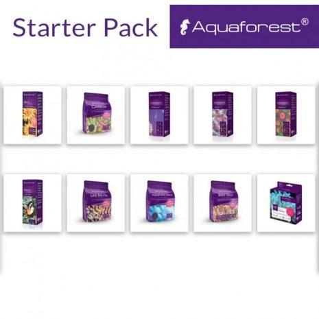starterpack-1587695011